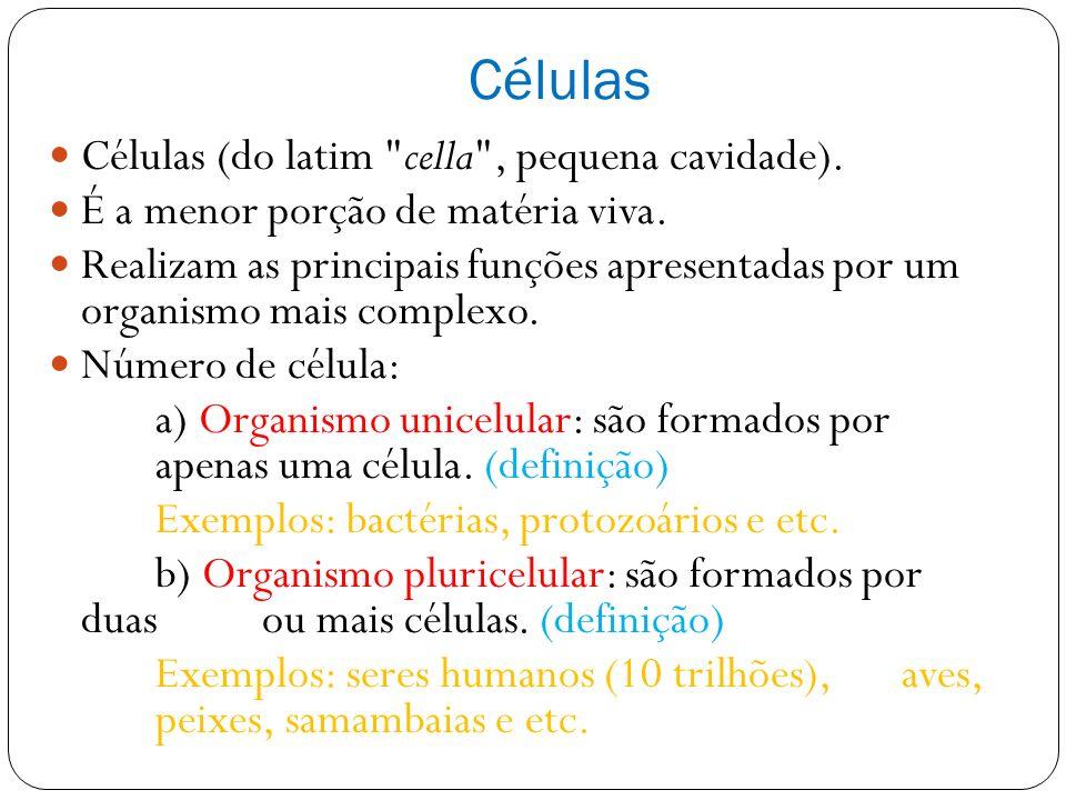 Células Células (do latim