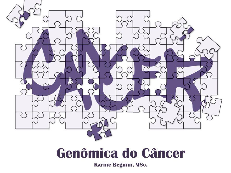 Genômica do Câncer Karine Begnini, MSc.
