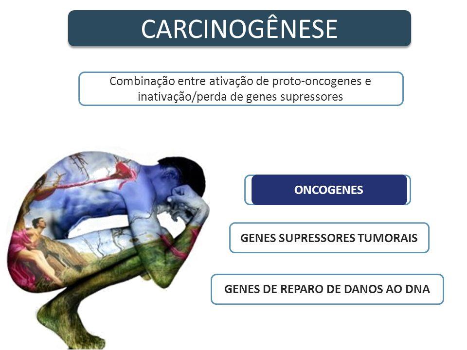 CARCINOGÊNESE PROTO-ONCOGENES GENES SUPRESSORES TUMORAIS GENES DE REPARO DE DANOS AO DNA ONCOGENES Combinação entre ativação de proto-oncogenes e inat