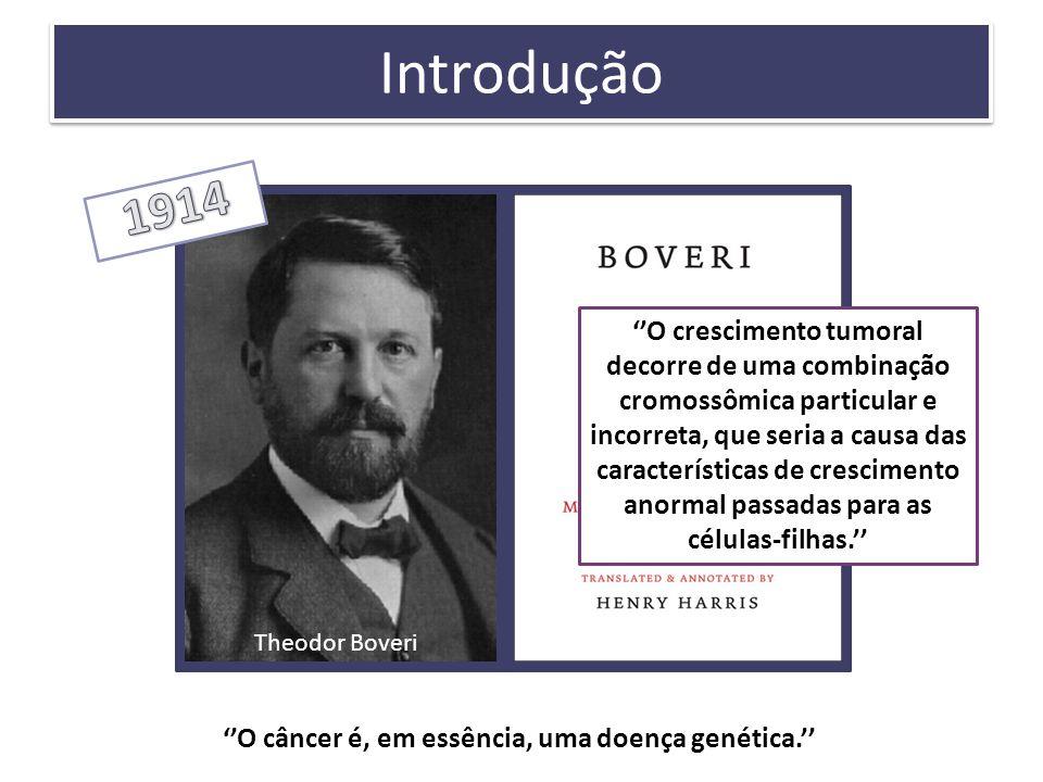 Introdução O câncer é, em essência, uma doença genética. Theodor Boveri O crescimento tumoral decorre de uma combinação cromossômica particular e inco