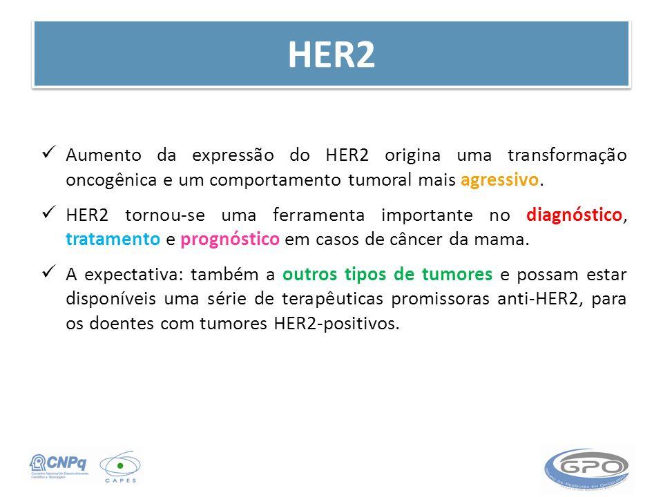 HER2 Aumento da expressão do HER2 origina uma transformação oncogênica e um comportamento tumoral mais agressivo. HER2 tornou-se uma ferramenta import