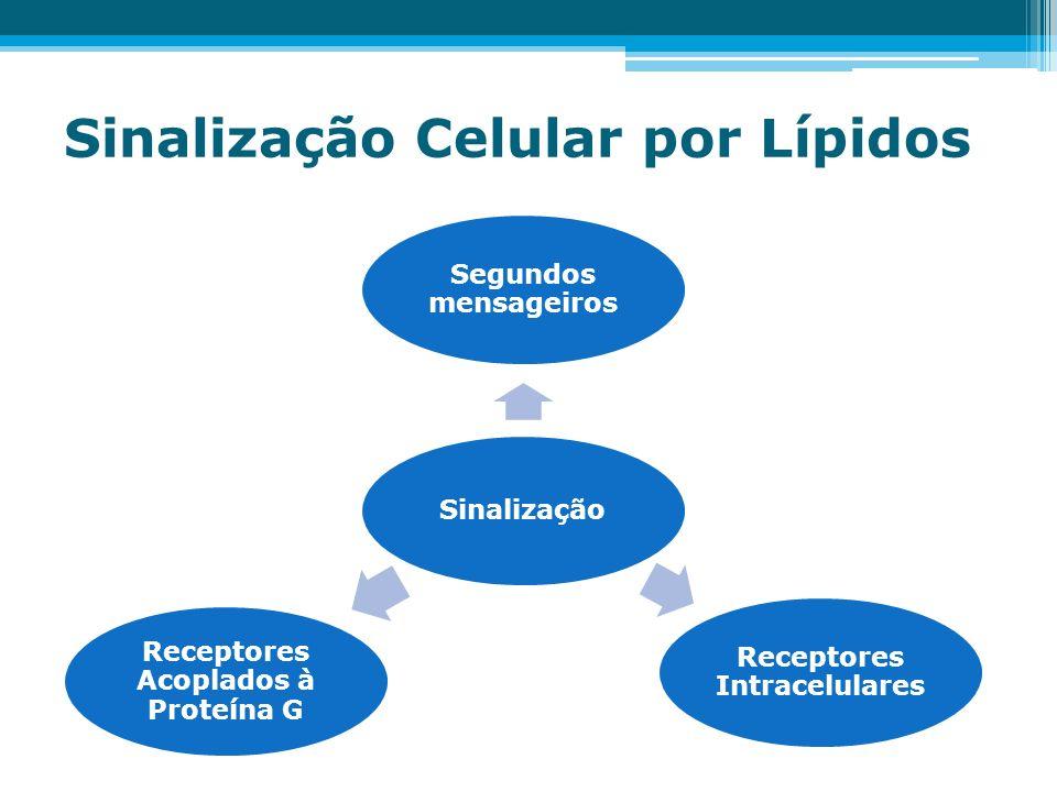 Sinalização Celular por Lípidos Sinalização Segundos mensageiros Receptores Intracelulares Receptores Acoplados à Proteína G