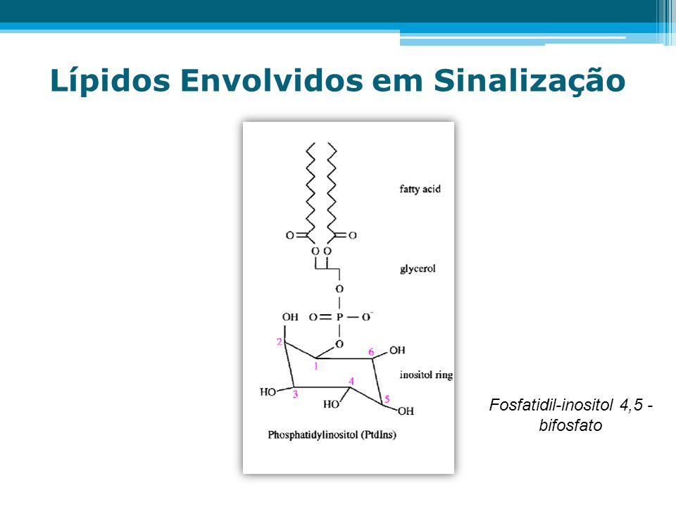 Lípidos Envolvidos em Sinalização Fosfatidil-inositol 4,5 - bifosfato
