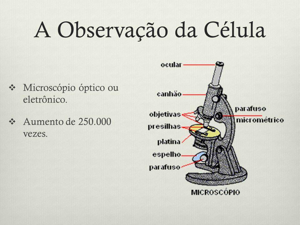 A Teoria Celular Todos os organismos são formados por células.