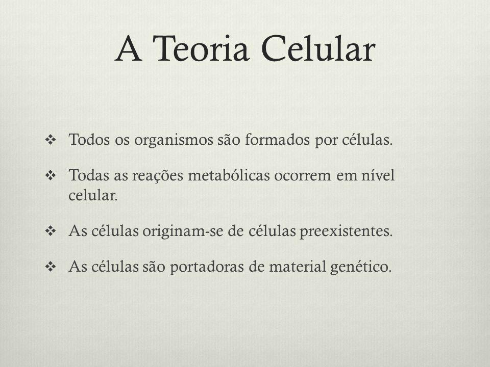 A Organização da Célula Membrana plasmática: permeabilidade seletiva.