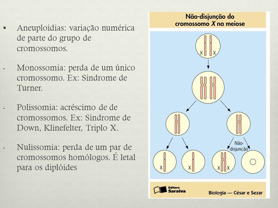Aneuploidias: variação numérica de parte do grupo de cromossomos. - Monossomia: perda de um único cromossomo. Ex: Síndrome de Turner. - Polissomia: ac