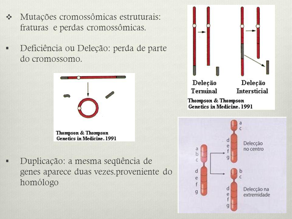 Mutações cromossômicas estruturais: fraturas e perdas cromossômicas. Deficiência ou Deleção: perda de parte do cromossomo. Duplicação: a mesma seqüênc