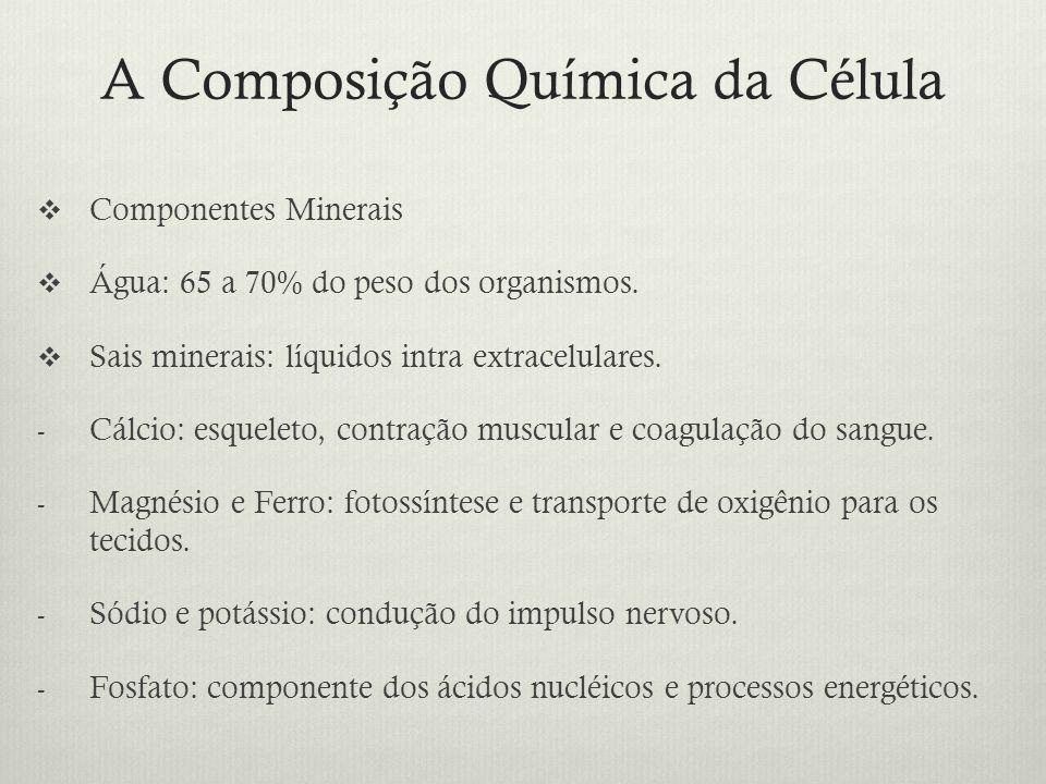 A Composição Química da Célula Componentes Minerais Água: 65 a 70% do peso dos organismos. Sais minerais: líquidos intra extracelulares. - Cálcio: esq