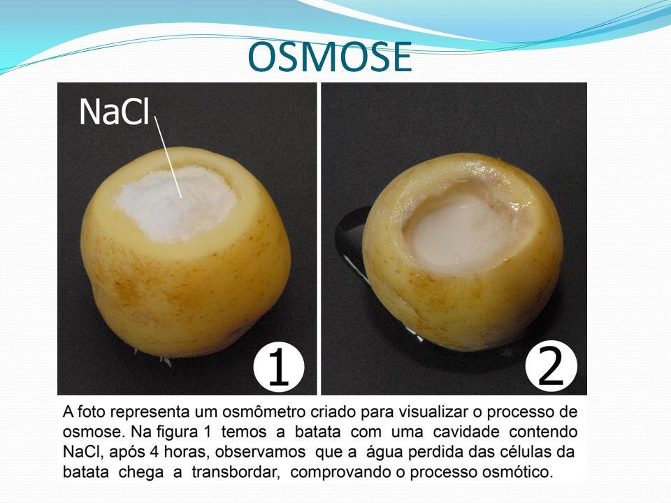 Ex.Sais minerais,Glicose,Vitaminas B e C, Aminoácidos DIFUSÃO FACILITADA + -