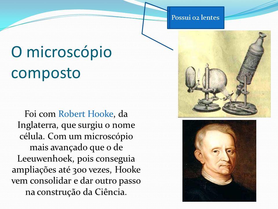 Tudo indica, porém, que o primeiro a fazer observações microscópicas de materiais biológicos foi o holandês Antonie van Leeuwenhoek (1632 - 1723). Os
