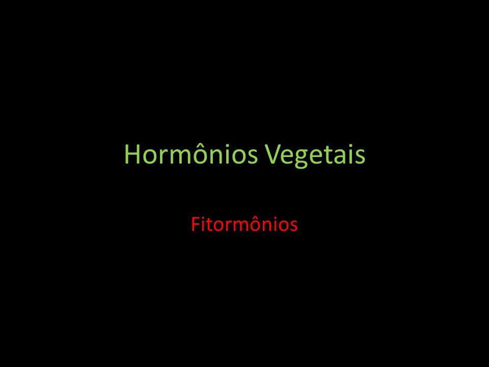 Hormônios Vegetais Fitormônios