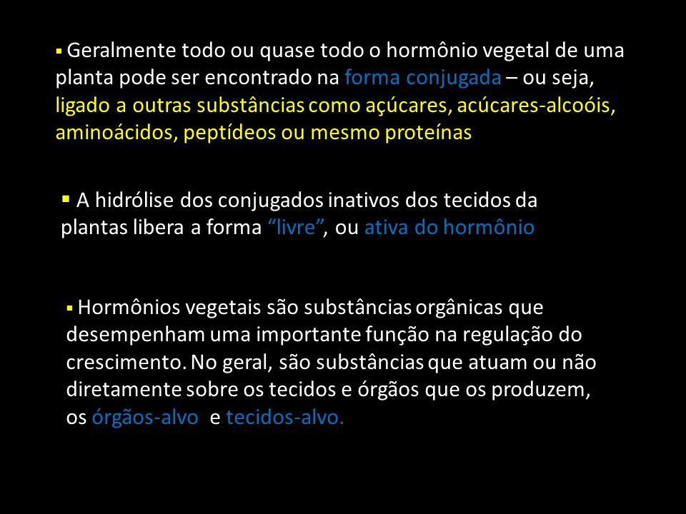 A palavra hormônio vem a partir do termo grego horman, que significa excitar .
