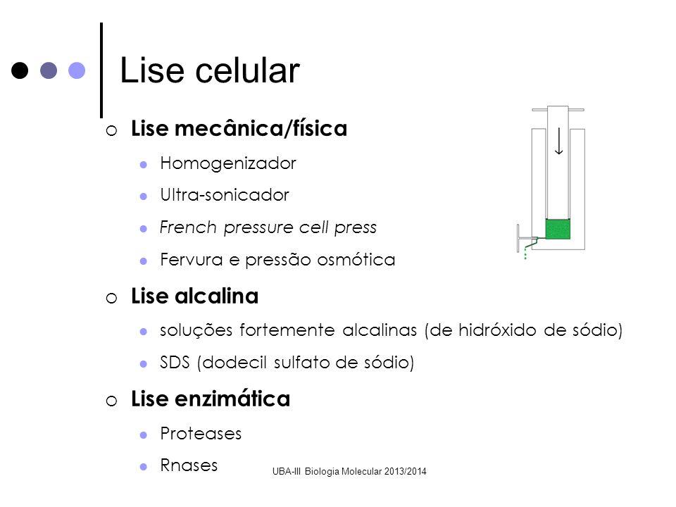 UBA-III Biologia Molecular 2013/2014 Lise mecânica/física Homogenizador Ultra-sonicador French pressure cell press Fervura e pressão osmótica Lise alc