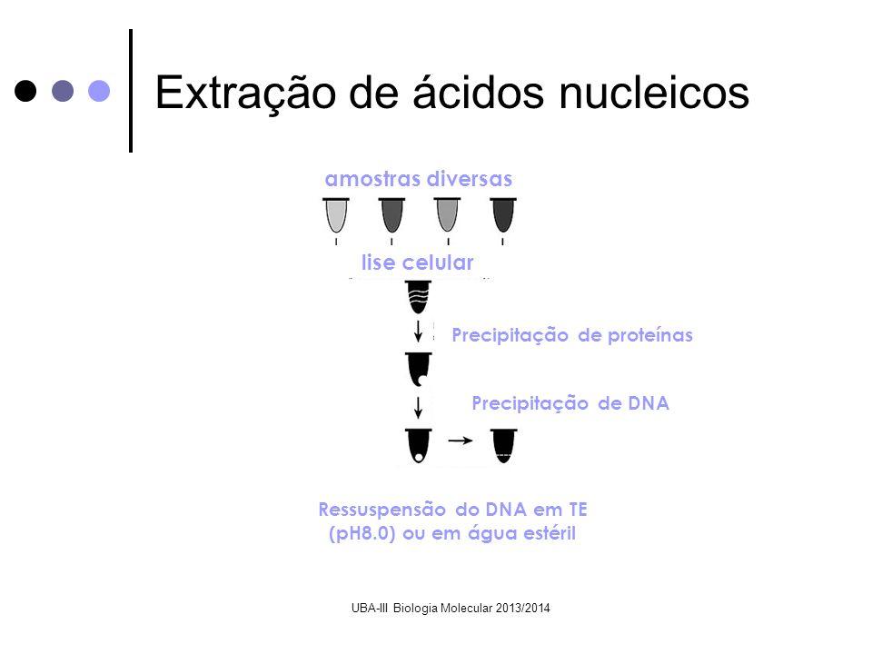 UBA-III Biologia Molecular 2013/2014 amostras diversas lise celular Precipitação de proteínas Precipitação de DNA Ressuspensão do DNA em TE (pH8.0) ou