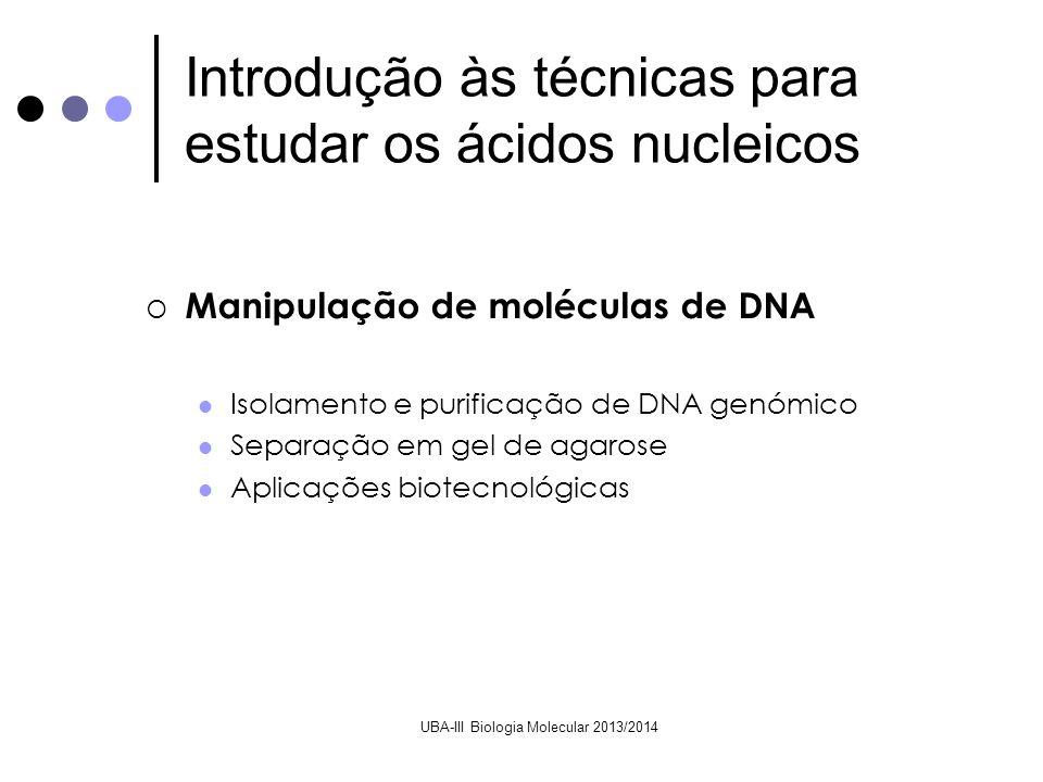 UBA-III Biologia Molecular 2013/2014 Manipulação de moléculas de DNA Isolamento e purificação de DNA genómico Separação em gel de agarose Aplicações b