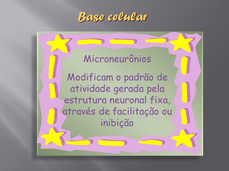 Microneurônios Modificam o padrão de atividade gerada pela estrutura neuronal fixa, através de facilitação ou inibição