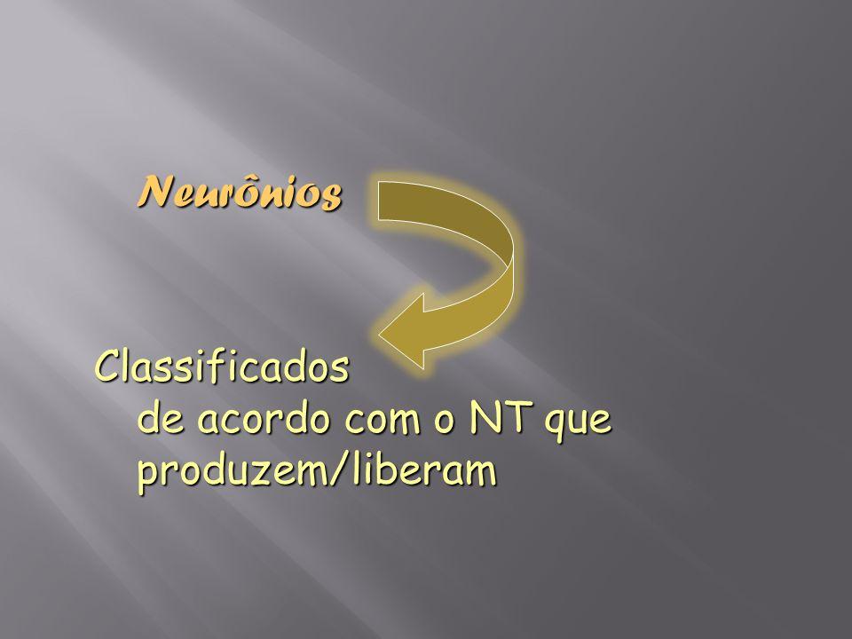 NeurôniosClassificados de acordo com o NT que produzem/liberam