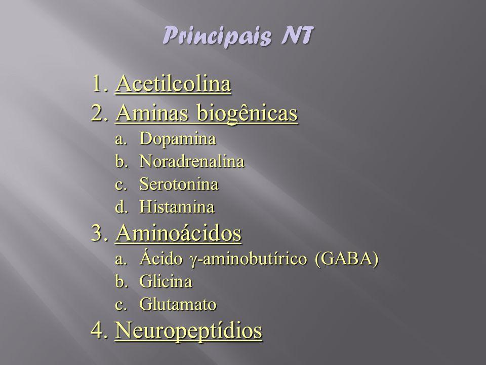 1.Acetilcolina 2.Aminas biogênicas a.Dopamina b.Noradrenalina c.Serotonina d.Histamina 3.Aminoácidos a.Ácido -aminobutírico (GABA) b.Glicina c.Glutama