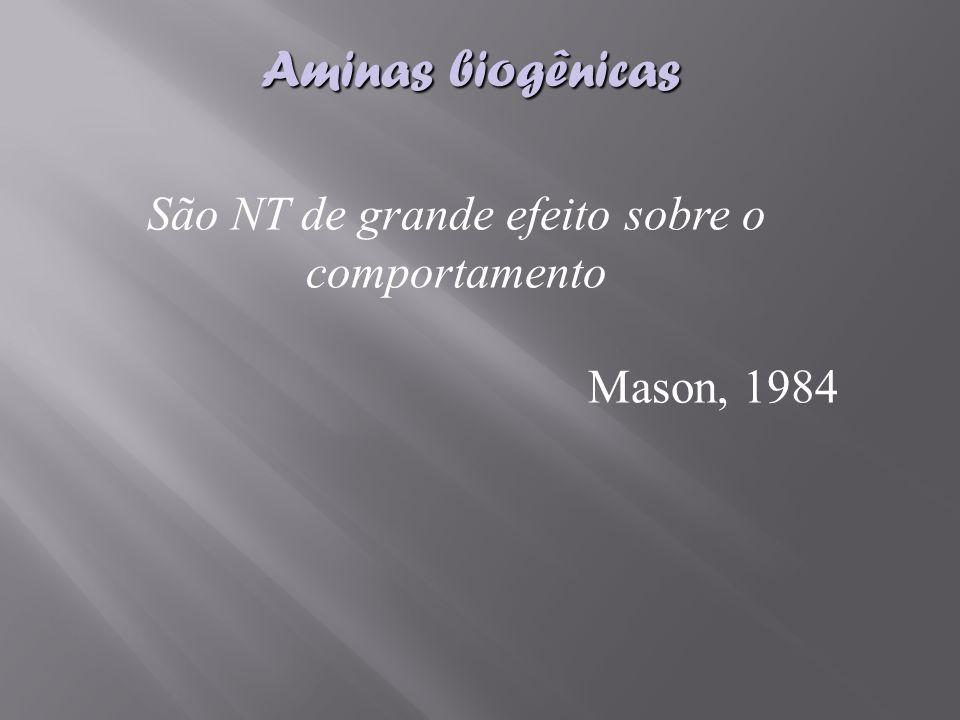 Aminas biogênicas São NT de grande efeito sobre o comportamento Mason, 1984