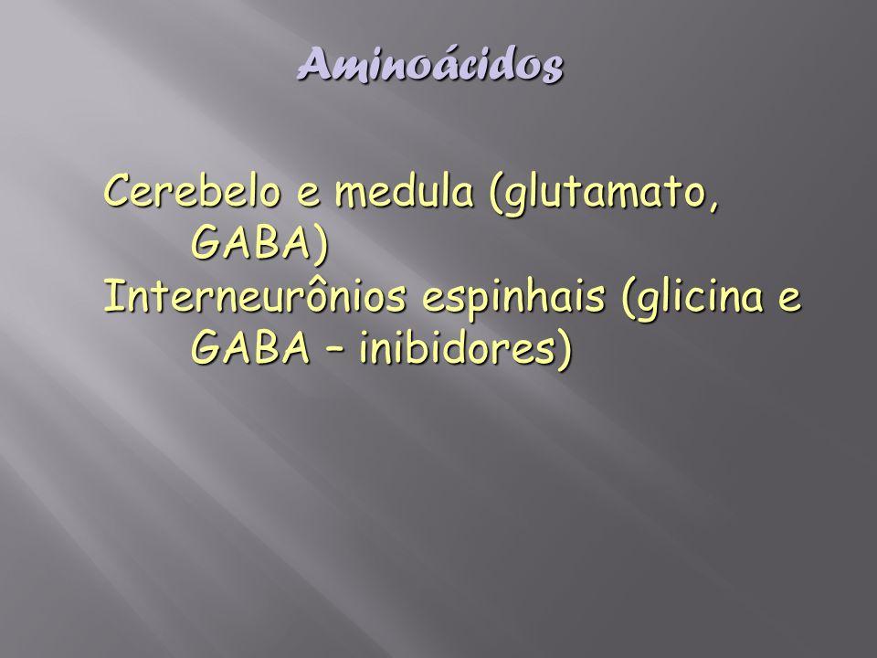 Aminoácidos Cerebelo e medula (glutamato, GABA) Interneurônios espinhais (glicina e GABA – inibidores)