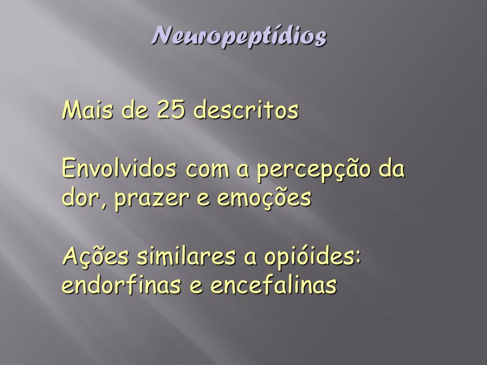 Neuropeptídios Mais de 25 descritos Envolvidos com a percepção da dor, prazer e emoções Ações similares a opióides: endorfinas e encefalinas