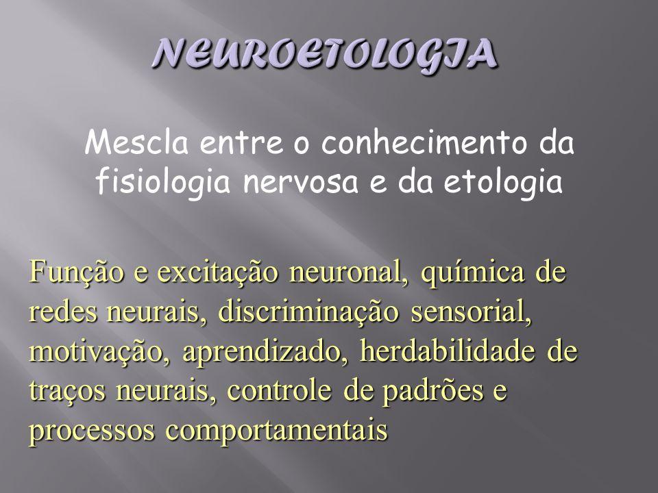 Função e excitação neuronal, química de redes neurais, discriminação sensorial, motivação, aprendizado, herdabilidade de traços neurais, controle de p