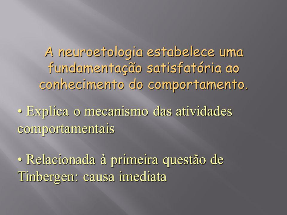 Explica o mecanismo das atividades comportamentais Explica o mecanismo das atividades comportamentais Relacionada à primeira questão de Tinbergen: cau
