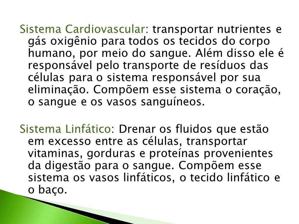Sistema Cardiovascular: transportar nutrientes e gás oxigênio para todos os tecidos do corpo humano, por meio do sangue. Além disso ele é responsável