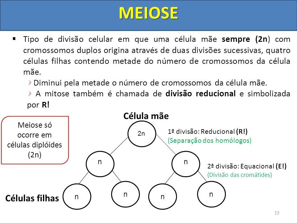 Tipo de divisão celular em que uma célula mãe sempre (2n) com cromossomos duplos origina através de duas divisões sucessivas, quatro células filhas co