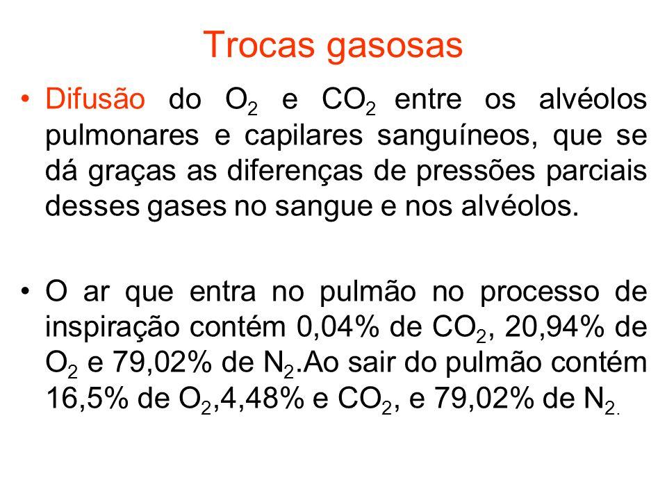 Trocas gasosas Difusão do O 2 e CO 2 entre os alvéolos pulmonares e capilares sanguíneos, que se dá graças as diferenças de pressões parciais desses g