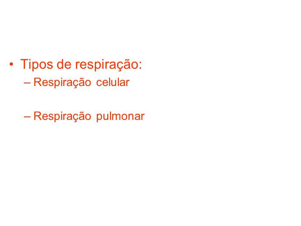 Tipos de respiração: –Respiração celular –Respiração pulmonar