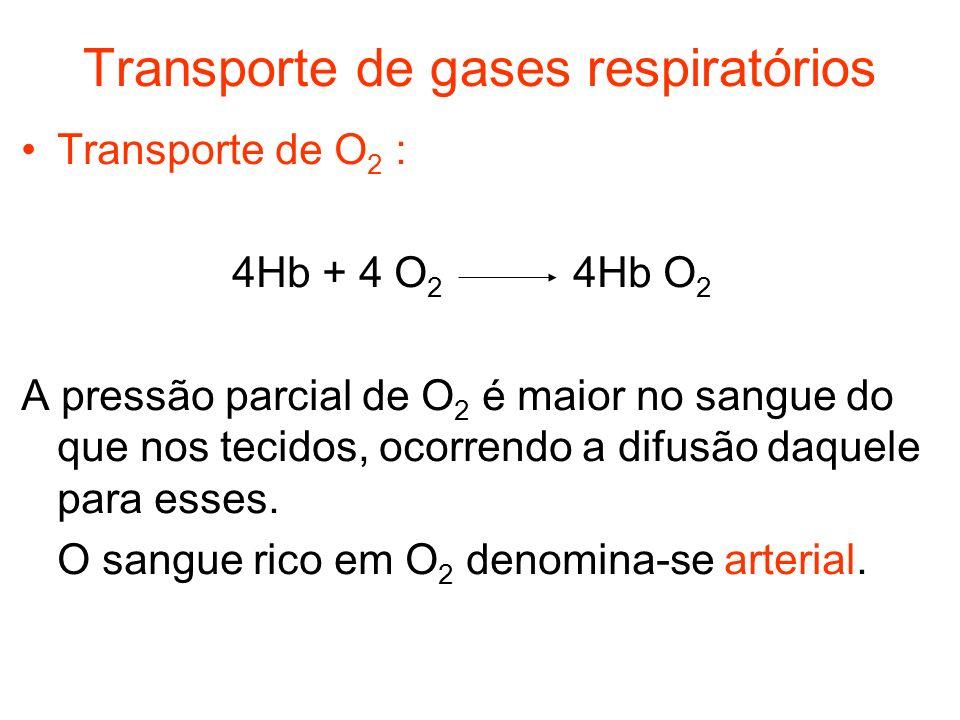 Transporte de gases respiratórios Transporte de O 2 : 4Hb + 4 O 2 4Hb O 2 A pressão parcial de O 2 é maior no sangue do que nos tecidos, ocorrendo a d