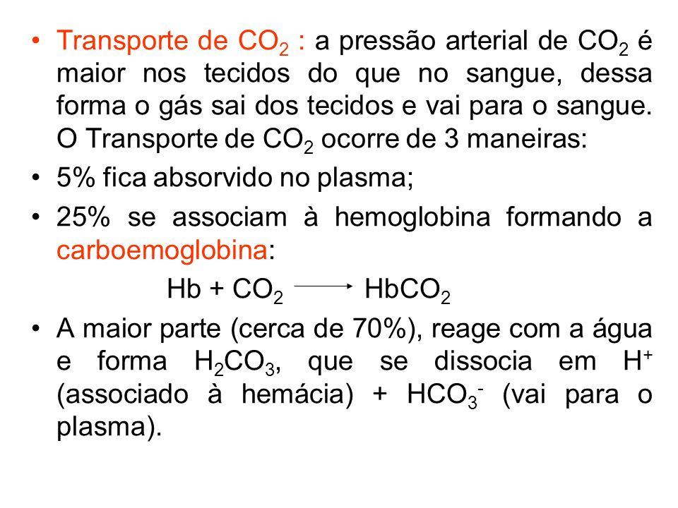 Transporte de CO 2 : a pressão arterial de CO 2 é maior nos tecidos do que no sangue, dessa forma o gás sai dos tecidos e vai para o sangue. O Transpo