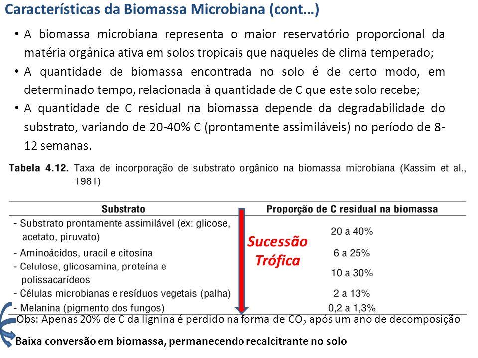 Características da Biomassa Microbiana (cont…) A biomassa microbiana representa o maior reservatório proporcional da matéria orgânica ativa em solos tropicais que naqueles de clima temperado; A quantidade de biomassa encontrada no solo é de certo modo, em determinado tempo, relacionada à quantidade de C que este solo recebe; A quantidade de C residual na biomassa depende da degradabilidade do substrato, variando de 20-40% C (prontamente assimiláveis) no período de 8- 12 semanas.