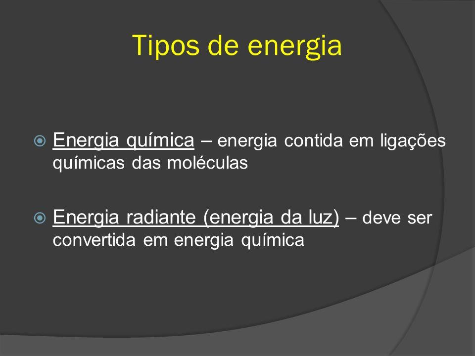 Tipos de energia Energia química – energia contida em ligações químicas das moléculas Energia radiante (energia da luz) – deve ser convertida em energia química