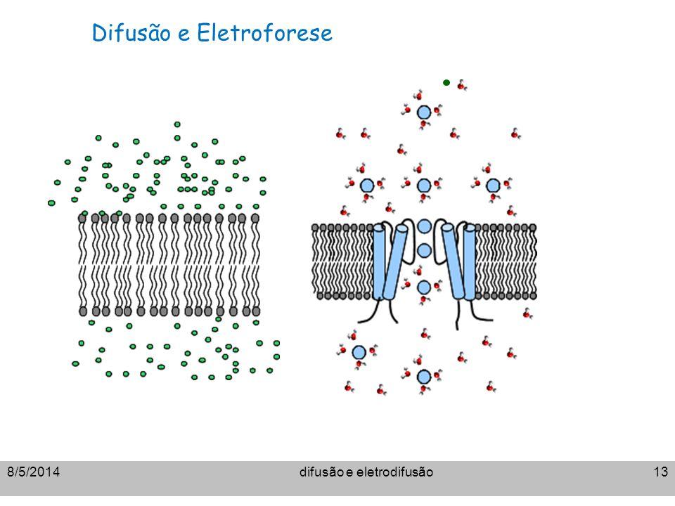 8/5/2014difusão e eletrodifusão13 Difusão e Eletroforese
