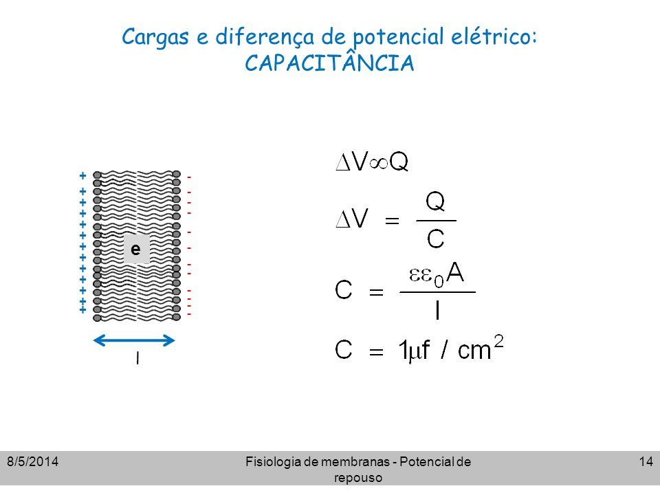 Cargas e diferença de potencial elétrico: CAPACITÂNCIA 8/5/2014Fisiologia de membranas - Potencial de repouso 14 + + + + + + + + + + + + + - - - - - -