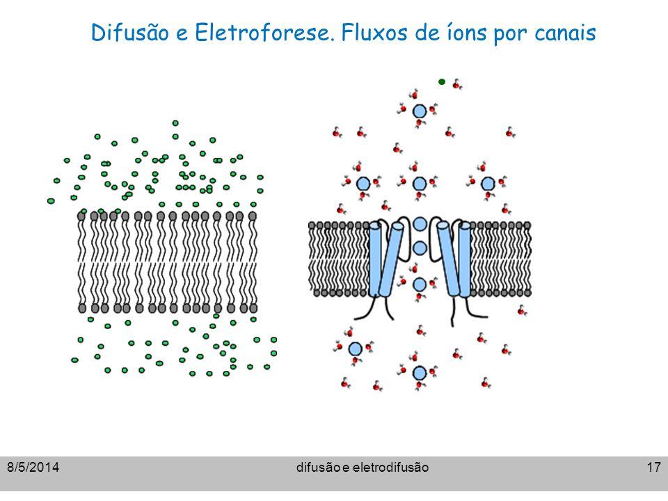 8/5/2014difusão e eletrodifusão17 Difusão e Eletroforese. Fluxos de íons por canais