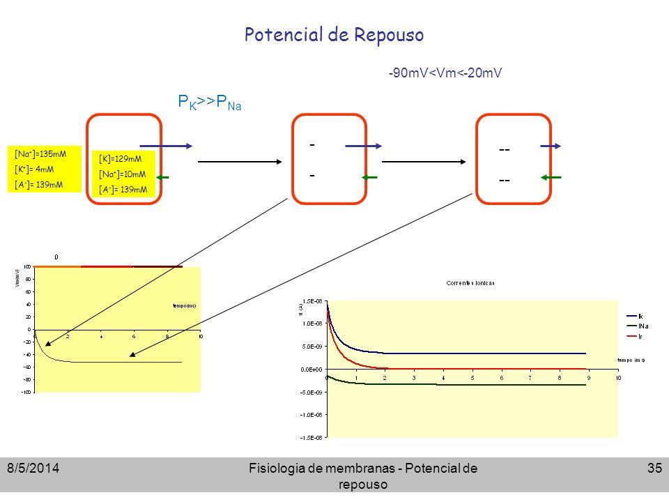 8/5/2014Fisiologia de membranas - Potencial de repouso 35 Potencial de Repouso ---- -- [Na + ]=135mM [K + ]= 4mM [A - ]= 139mM [K]=129mM [Na + ]=10mM