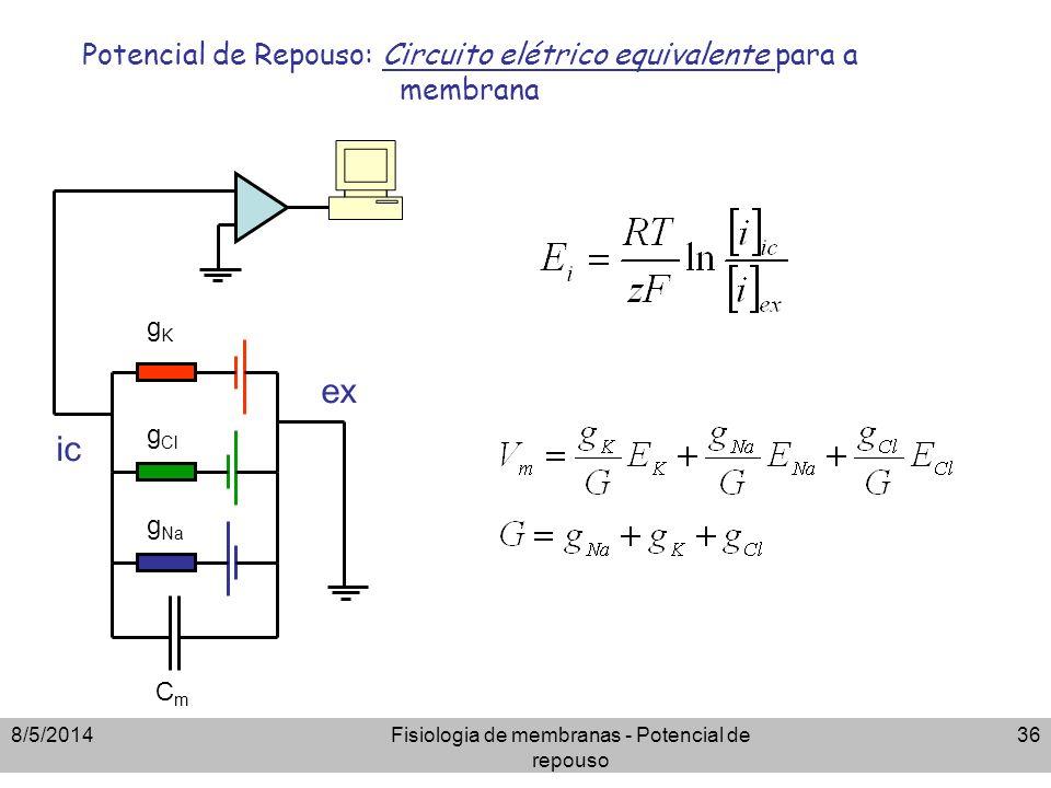8/5/2014Fisiologia de membranas - Potencial de repouso 36 Potencial de Repouso: Circuito elétrico equivalente para a membrana g Cl gKgK ic ex CmCm g N