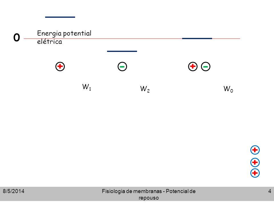 8/5/2014Fisiologia de membranas - Potencial de repouso 4 + + + + -+- 0 W1W1 W2W2 W0W0 Energia potential elétrica
