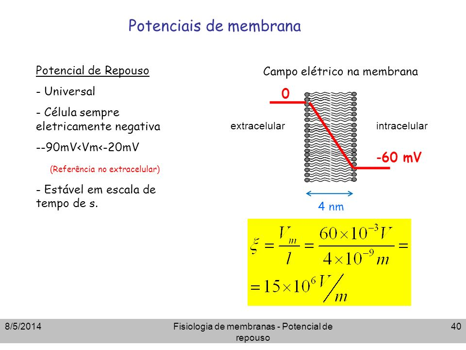 8/5/2014Fisiologia de membranas - Potencial de repouso 40 Potenciais de membrana Potencial de Repouso - Universal - Célula sempre eletricamente negati