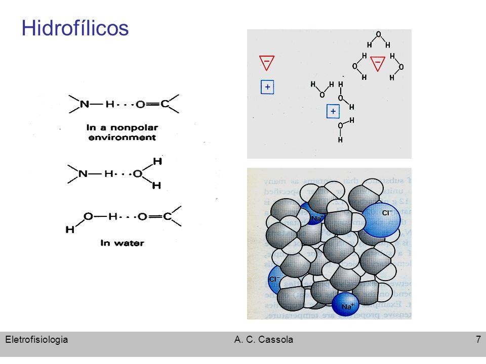 Abril, 2008Fisiologia de membranas – Transporte por carregadores 38 Medidas da diferença de potencial elétrico em sistemas biológicos 10m m Medida intracelular