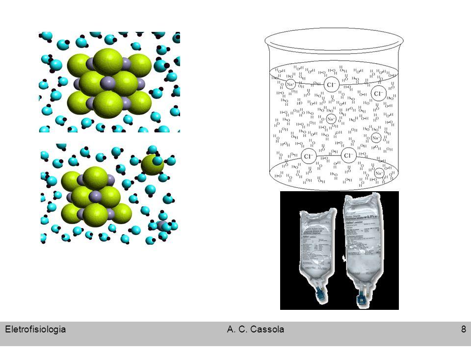 EletrofisiologiaA. C. Cassola19 Eletrodifusão por áreas restritas: CANAIS e POROS