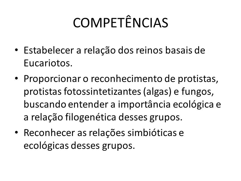 SABERES Protistologia: o Reino protista, importância ecológica, econômica.