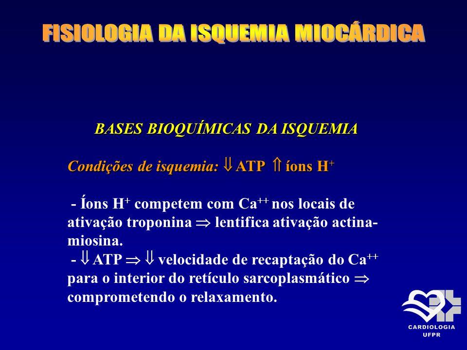BASES BIOQUÍMICAS DA ISQUEMIA BASES BIOQUÍMICAS DA ISQUEMIA Condições de isquemia: ATP íons H + - Íons H + competem com Ca ++ nos locais de ativação t