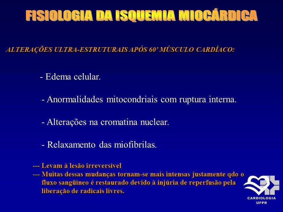 ALTERAÇÕES ULTRA-ESTRUTURAIS APÓS 60 MÚSCULO CARDÍACO: - Edema celular. - Anormalidades mitocondriais com ruptura interna. - Alterações na cromatina n