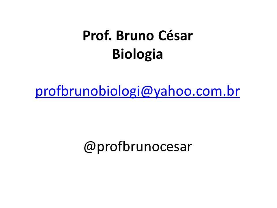 Prof. Bruno César Biologia profbrunobiologi@yahoo.com.br @profbrunocesar profbrunobiologi@yahoo.com.br