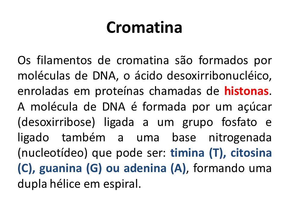 Cromatina Os filamentos de cromatina são formados por moléculas de DNA, o ácido desoxirribonucléico, enroladas em proteínas chamadas de histonas. A mo