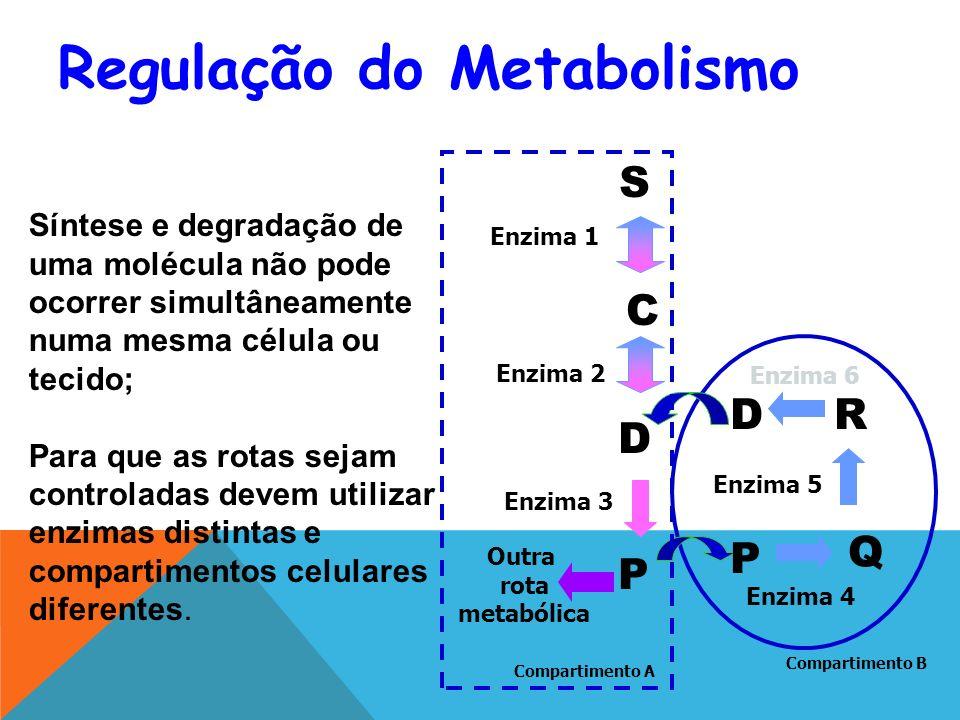 S C D R Enzima 3 Enzima 2 Enzima 1 Enzima 6 Enzima 5 D Q Enzima 4 Síntese e degradação de uma molécula não pode ocorrer simultâneamente numa mesma célula ou tecido; Para que as rotas sejam controladas devem utilizar enzimas distintas e compartimentos celulares diferentes.